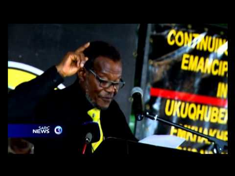 IFP leader Mangosuthu Buthelezi may step down as party president within the next three years.
