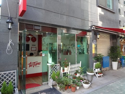 My $50 A Night Room In Insadong, Seoul, South Korea - Fortune Hostel.