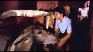 Ina - Kadhalipookadukal | INa | Malayalam Movie Song