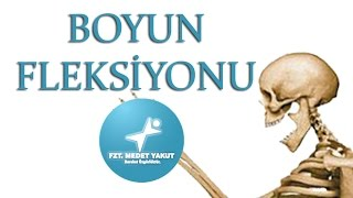 Boyun Fleksiyonu (Neck/Head Flexion)