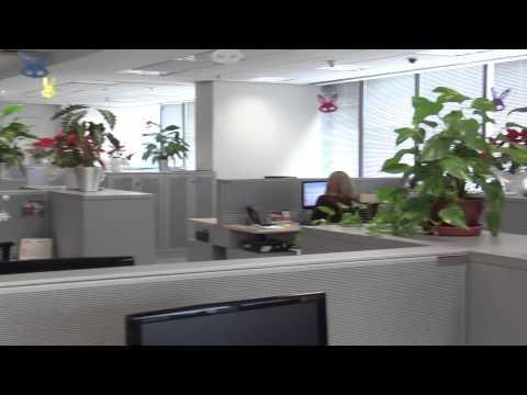 Vídeo de treinamento do Santander - www.spina.com.br - Spina Produções
