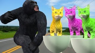Gorilla Finger Family | Nursery Rhymes For Childrens | Colors Animals Finger Family Songs |