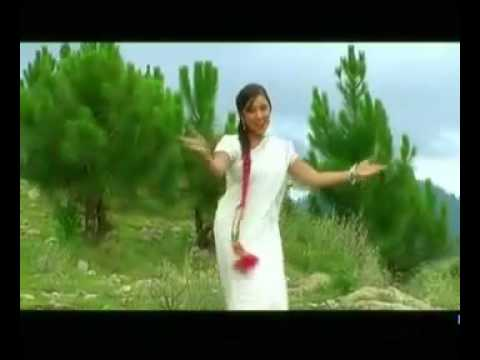 Nazia Iqbal ✄ Latest Song ✄ Cha Nary Nary Baran Wi ✄ DAncer ✄ Sahar Malik
