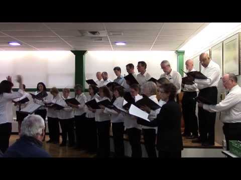 Talisman Energy Choir - O Christmas Tree