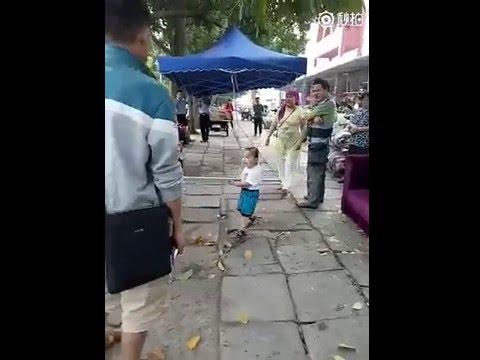Mirá al nene que defiende a su abuela mantera con un palo
