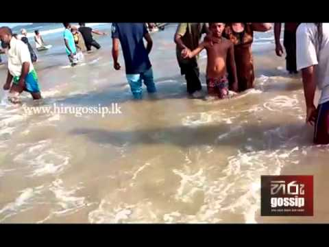 Weligama Beach Incident. - Hiru Gossip (www.hirugossip.lk)