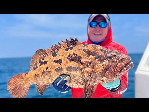 поппинг рыбалка
