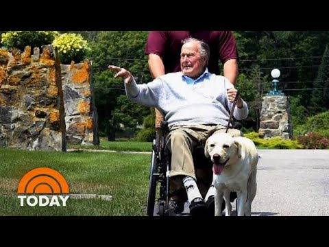 Inside George H.W. Bush's Special Bond With  Dog Sully | TODAY