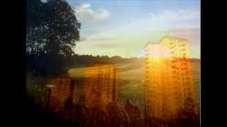Artur Erikson - Gyllne Morgon ( Golden morning ) Farsta  -  Mats Forsberg