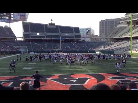 Bengals running some offense at the practice at Paul Brown
