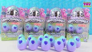 Sparkly Spring Hatchimals CollEGGtibles Target Exclusive 2 Packs Surprise Egg Toy Review | PSToyRevi
