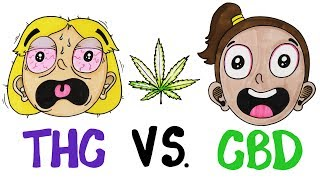 THC vs CBD: What
