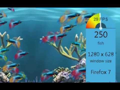0 Debunking Powerpenguin1s Fish Tank Windows vs. Linux video (Hardware acceleration).