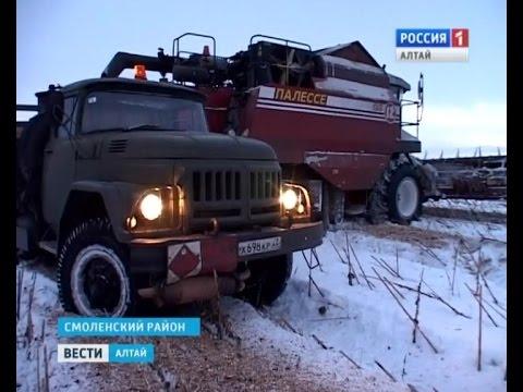 """""""Снежная"""" уборка урожая продолжается и в 2015-м"""