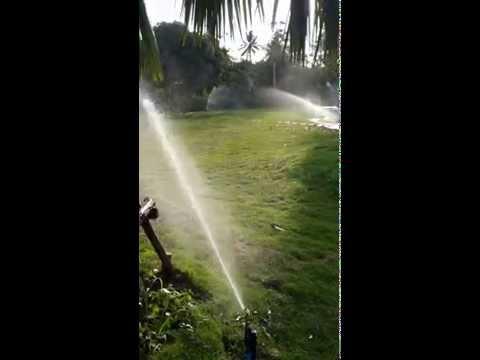 การทำงานของสปริงเกอร์ แบบตีน้ำ (Impact)