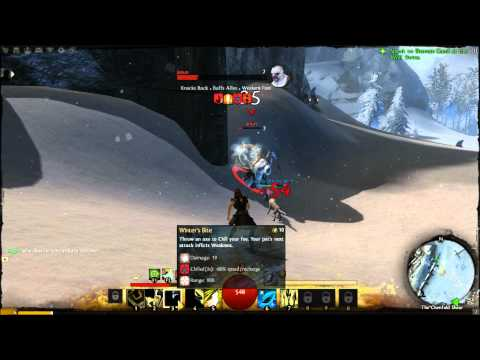Nvidia Geforce GT 630m Guild Wars 2 beta