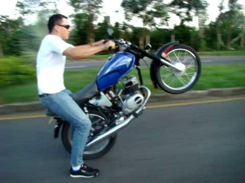 Pato loco picando su moto - villavicencio