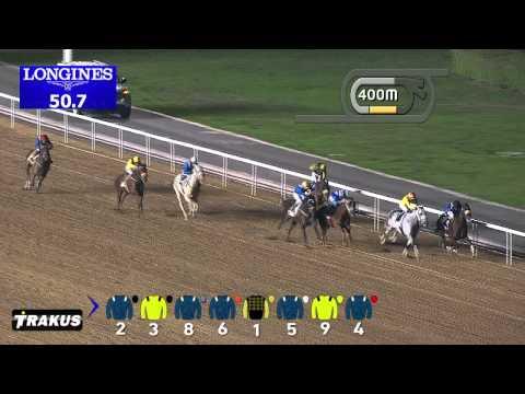 Vidéo de la course PMU THE GARHOUD SPRINT