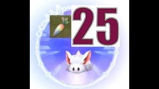 RO  仙境傳說  守護永恆的愛  手遊日誌  第27集  用25個彩色蘿蔔  捉瘋兔