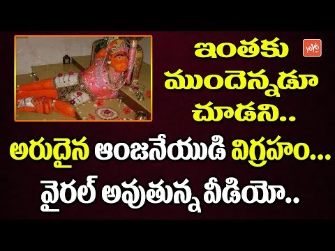 Rare Pic Of Lord Hanuman Going Viral | Anjaneya Swamy Viral Video | Telugu News Latest | YOYO TV