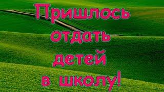 Отдали детей в школу! Куда и почему? (03.19г.) Семья Бровченко.