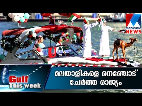 UAE celebrates 44th National Day | Manorama News