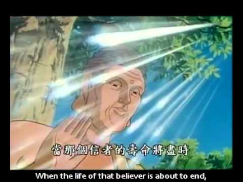 The Buddha Speaks of Amitabha [Infinite Light] Sutra [Eng Sub]