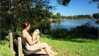 افراد تنها و نگهداری حیوان خانگی- نظر دکتر هلاکویی