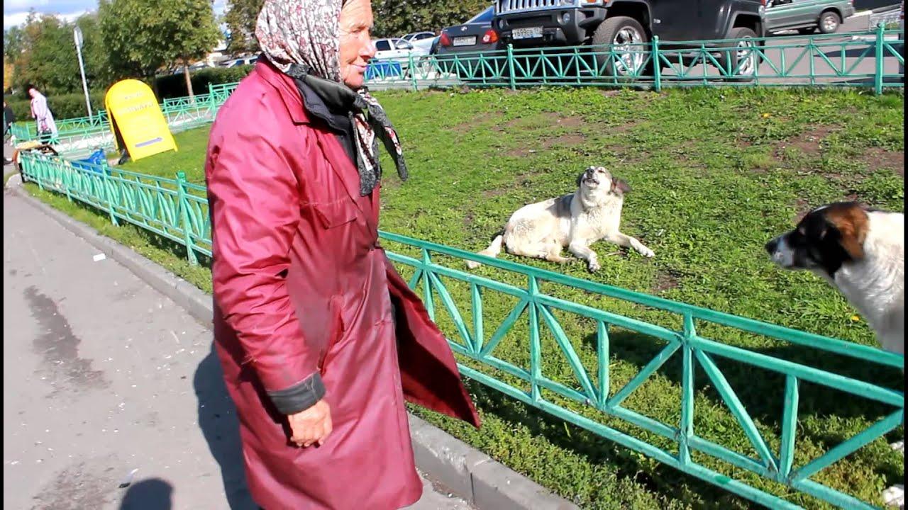Русские бабы ругаются матом 11 фотография