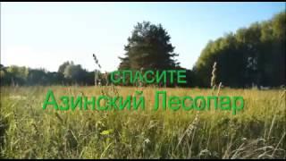 Казанец рассказывает о природе Казани, об уничтожении Азинского лесопарка, Казань