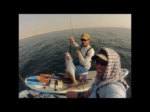 SUP Fishing Qatar