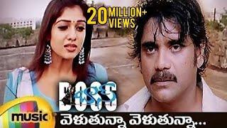 Boss I Love You Songs   Velutunna Velutunna Full Telugu Song   Nagarjuna   Nayanthara   Sunitha