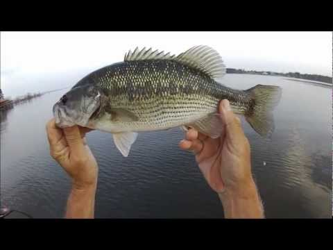 Bass Fishing Toledo Bend Mar 18 2013