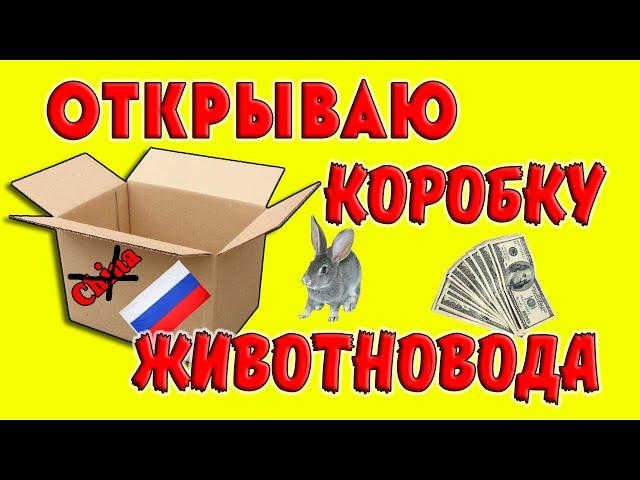 Открываю коробку животновода / Покупать в России выгоднее, чем в Китае