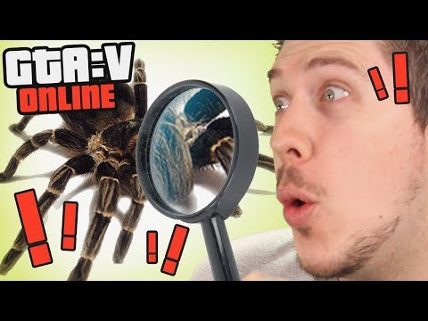 THE ARACHNOLOGIST | GTA 5 Online Playlist
