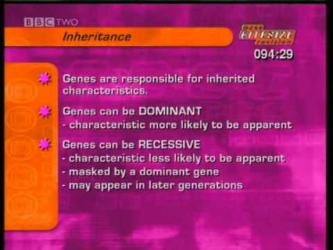 GCSE BBC Science Bitesize - Variation, Inheritance and Evolution