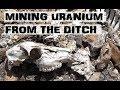 Radioactive Camping