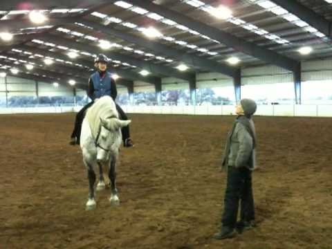 Kristen Does Dressage - Part 4 Video