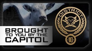 District 10: A Message From The Capitol