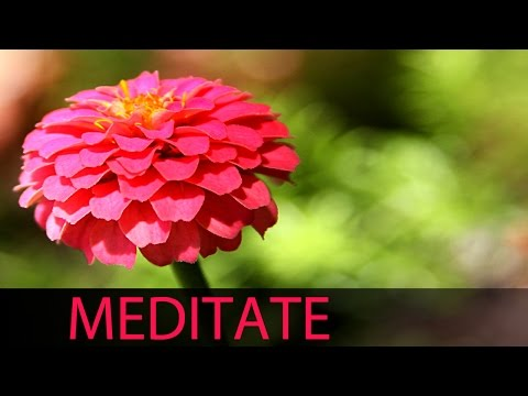 6 Hour Relaxation Music: Soft Instrumental Background Music To Relax Mind Body, Yoga ☯039 video