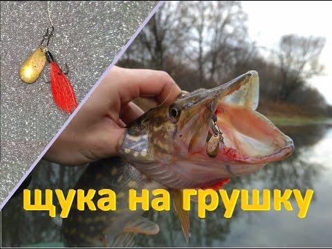 ловля рыбы на мандулу весной видео