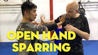 Open Hand Sparring: Bagua vs Wing Chun vs MMA