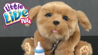 Little Live Pets Snuggles My Dream Puppy from Moose Toys
