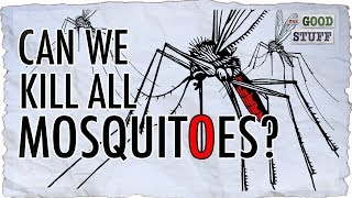Should We Make Mosquitoes Extinct?