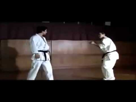 Shotokan Karate Hightlights video