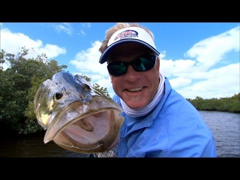 Everglades Fly - SNOOK on the buggy whip
