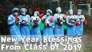 New Year Blessings From Class Of 2019 | iPanda