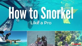 How To Snorkel Like a Pro With These Simple Tips