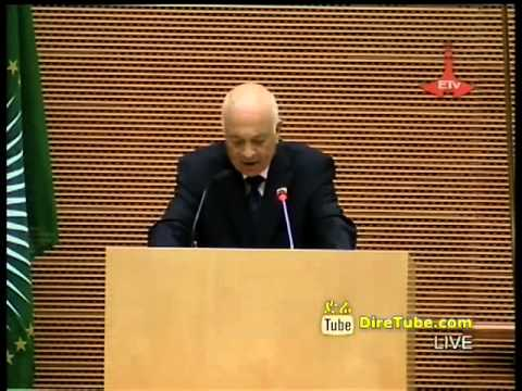 Speech by Secretary-General of the Arab League Dr Nabil Elaraby