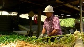 Sin Patrón, cap. 9, 2º parte, Juan Carlos Arancibia, Productor de flores